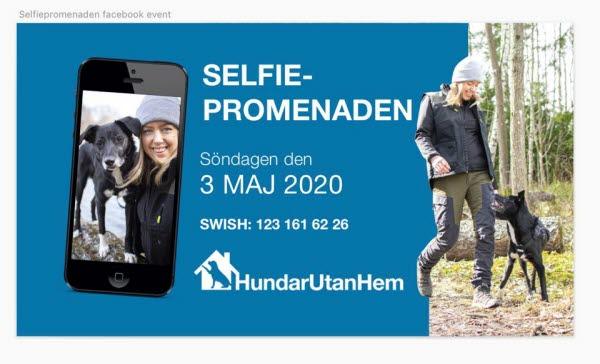 Bilden föreställer selfiepromenaden