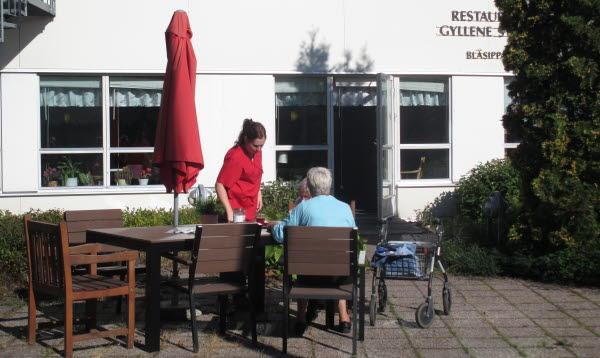 Bilden visar en utemiljö vid Strandbo