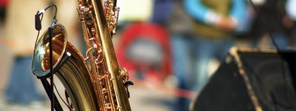 Bilden visar ett blåsinstrument.