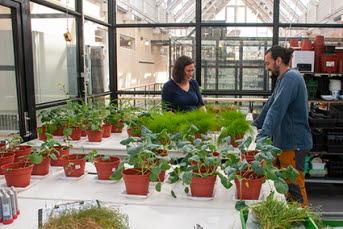 En kvinna och en man står i ett växthus. Gröna växter står på ett vitt bord framför dem.