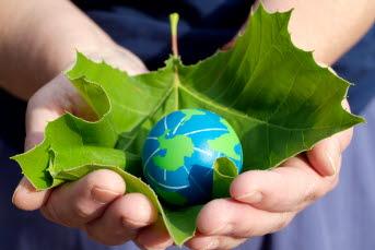 Bilden föreställ händer som håller i ett löv och en liten jordglob
