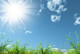 Bilden föreställer en äng med sol som skiner.