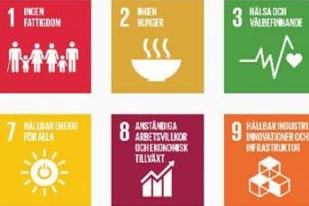 Bilden föreställer illustrationer på de globala målen.