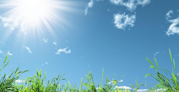 Blå himmel, sol och gräs.