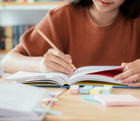 Bilder föreställer en elev som studerar.