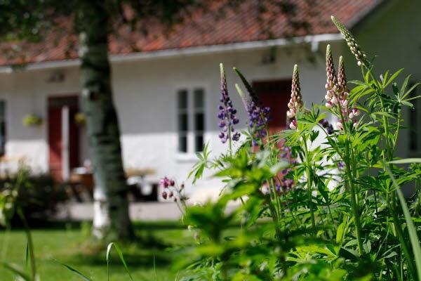 Bilden föreställer ett vitt hus vid Lögdö Bruk