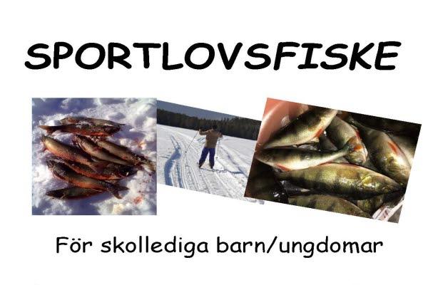 Bilden föreställer bilder på fiskar och en skidåkare