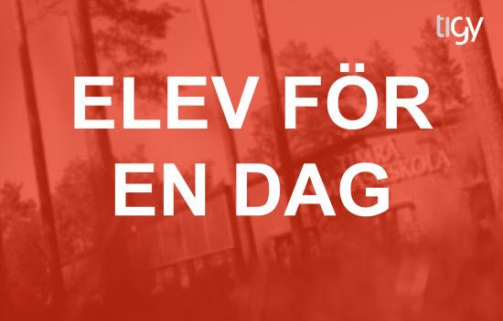 Bli elev för en dag på Timrå gymnasium